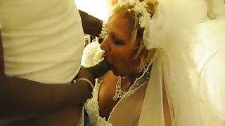 My cuckold soft-pedal lets me have some fun with a black beggar on our wedding night-time